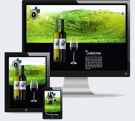 Vin et Spiritueux